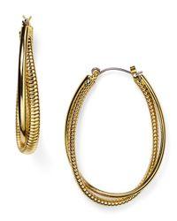 Diane von Furstenberg | Metallic Omega Twist Hoop Earrings | Lyst