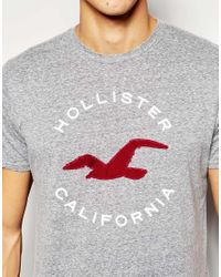 Hollister | Gray T-shirt ' California' With Seagull Print for Men | Lyst