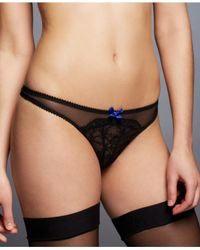 L'Agent by Agent Provocateur | Black Felicitia Thong L063-31 | Lyst