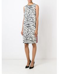 Fausto Puglisi - Black Animal Print Skater Dress - Lyst