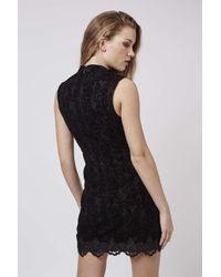 TOPSHOP - Black Flock Sheer Lace Panel Dress - Lyst