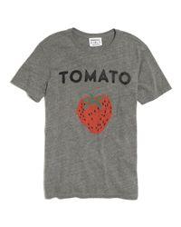 Madewell Gray Rxmancereg 181 Tomato Tee