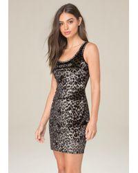 Bebe Black Logo Leopard Print Dress