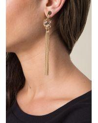 Bebe | Multicolor Leopard Duster Earrings | Lyst