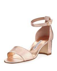 Manolo Blahnik - Pink Lauratom Snake-embossed Leather Sandal - Lyst