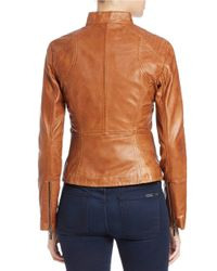 Bernardo - Brown Stitched-detail Leather Jacket - Lyst