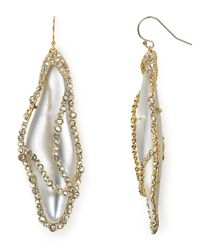 Alexis Bittar | Metallic Lucite Caged Dragonfly Wing Wire Earrings | Lyst