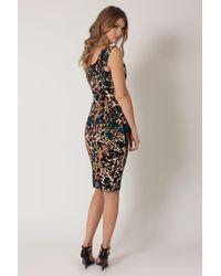 Black Halo Multicolor Multi Leopard Jackie O Dress