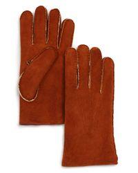 Bloomingdale's Natural Shearling Gloves for men