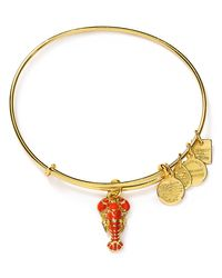 ALEX AND ANI | Metallic Lobster Expandable Wire Bangle, Charity By Design Collection | Lyst