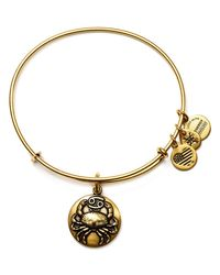 ALEX AND ANI | Metallic Cancer Expandable Wire Bangle | Lyst
