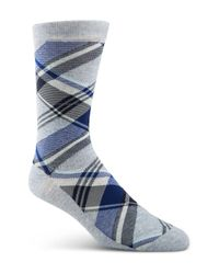 Cole Haan Blue Diagonal Plaid Crew Socks for men