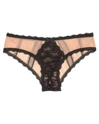 Hanky Panky Brown After Midnight Stretch Tulle Open Panel Bikini