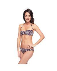 Juicy Couture - Purple Bandeau Swimsuit Top Leopard Regeot - Lyst