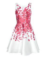 Boohoo - Red Beth Sateen Floral Print Skater Dress - Lyst