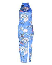 Boohoo Blue Tall Ellie Oriental Print Velvet Dress
