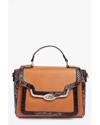 Boohoo Multicolor Amy Faux Snake Metal Lock Structured Day Bag