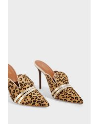 Malone Souliers Multicolor Hayley Leopard-print Calf Hair Mules