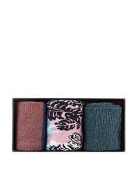 Ted Baker 3er-Pack Socken in Multicolor für Herren