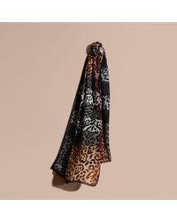 Burberry | Lightweight Animal Print Check Silk Scarf Camel/black | Lyst