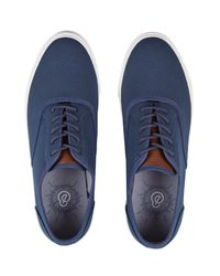 Burton Blue Navy Suede Look Plimsolls for men