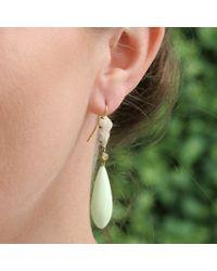 Sylva & Cie Metallic Lemon Chrysoprase Mammoth Drop Earrings