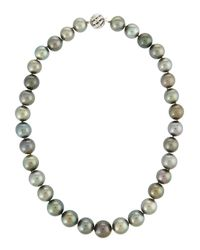 Belpearl | 14k Multicolored Tahitian Pearl Necklace | Lyst