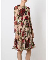 Dolce & Gabbana - Multicolor Rose Print Dress - Lyst