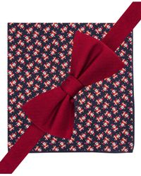 Tommy Hilfiger Red Solid Pre-tied Bow Tie And Santa Pocket Square Set for men