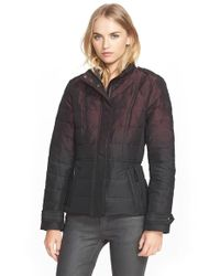 Burberry Brit Purple 'dalesbury' Ombre Down Jacket