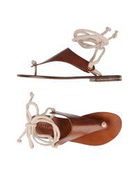 Studio Pollini - Brown Thong Sandal - Lyst