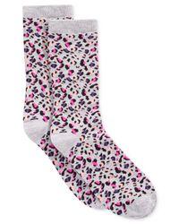 Spectrum Multicolor Alfani Glam Leopard Crew Socks