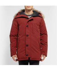Canada Goose Purple Chateau Coyote-Trimmed Down-Filled Parka for men