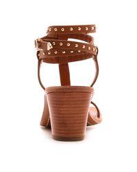 Ivy Kirzhner Brown Olympian Studded Sandals
