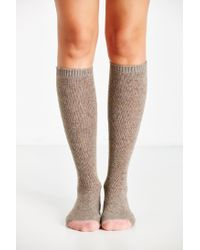 Urban Outfitters - Brown Colorblock Basic Knee-high Sock - Lyst