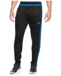 Adidas Blue Tiro 15 Climacool® Training Joggers for men