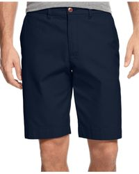 Tommy Hilfiger Blue Big & Tall Chino Shorts for men