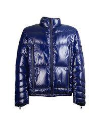 Prada Blue Coats
