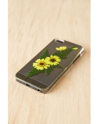 Urban Outfitters - Yellow Pressed Flower Iphone 5/5s Case - Lyst