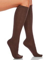 Hue | Brown 2-Pack Cable Knit Knee Socks | Lyst