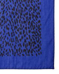 Saint Laurent | Blue Leopard Print Scarf | Lyst