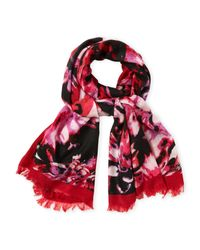 Badgley Mischka | Pink Lily Print Scarf | Lyst