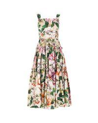 Dolce & Gabbana Multicolor Floral Printed Dress
