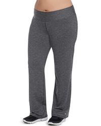 Champion Gray Plus Absolute Semi-fit Pants