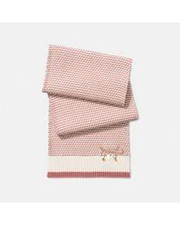 COACH - Pink Charm Knit Scarf - Lyst