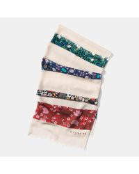 COACH | Multicolor Yankee Floral Patchwork Oblong Scarf | Lyst