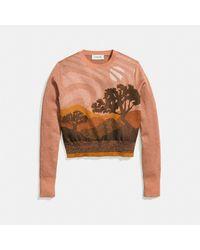 COACH Black Landscape Crewneck Sweater