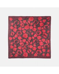 COACH - Red Scribble Camo Rose Scarf - Lyst