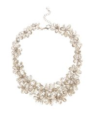 Coast - Metallic Foxy Fenella Necklace - Lyst