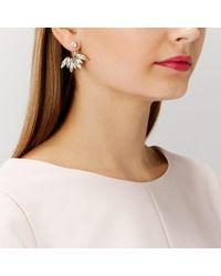 Coast | Metallic Iris Floral Earrings | Lyst